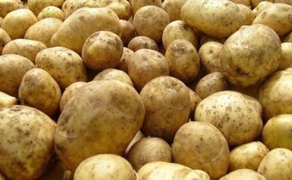 Картошка на еду, картошка на