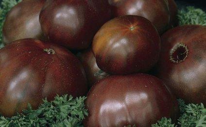 Помидоры, помидоры сорта